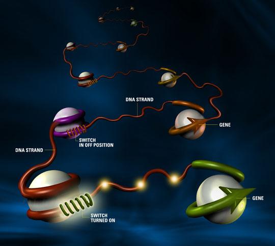 """Công nghệ gen – vũ khí """"hủy diệt"""" của tương lai"""