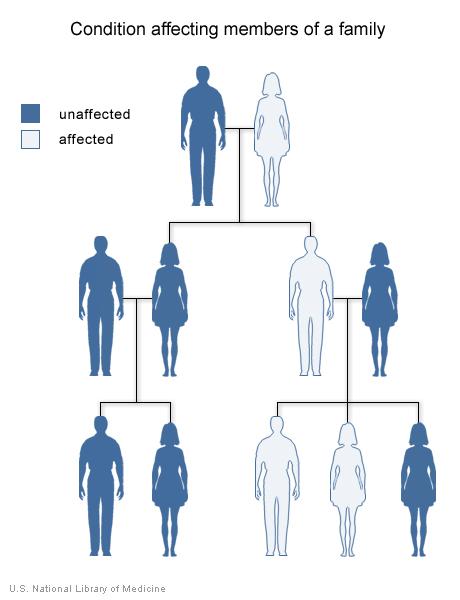 Di truyền