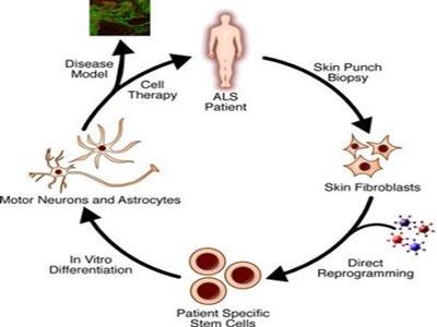 Một số vấn đề về di truyền học