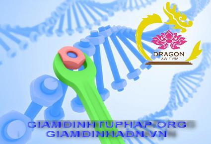 Phát hiện gene ung thư vú mới