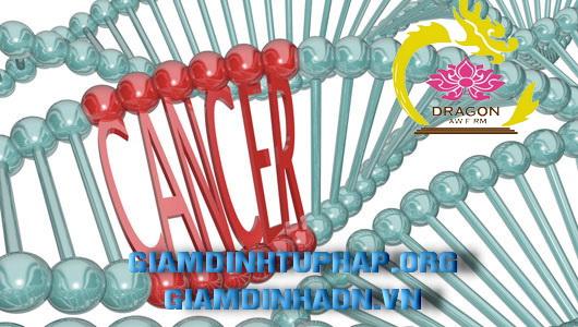 Giám định gen (ADN) tại Việt Nam