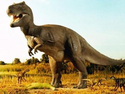 Giam dinh gen: Hồi sinh khủng long bằng nhân bản vô tính?