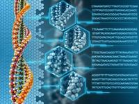 """Biến ADN thành """"ổ cứng sống"""""""