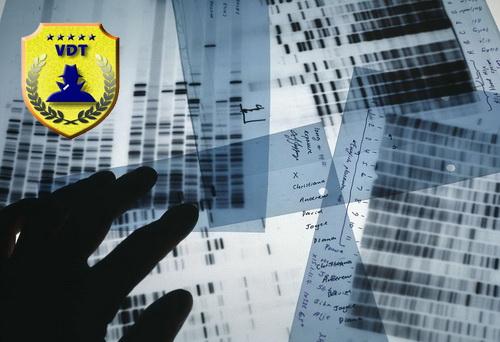 Hà Lan phá vụ giết người từ 13 năm trước nhờ ADN