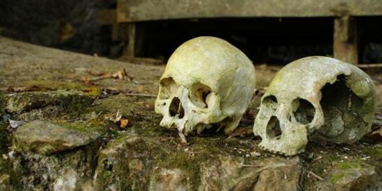 Công nghệ DNA mới giải mã những cái chết bí ẩn