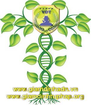 Thủ tục yêu cầu giám định gen (adn)