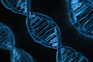 Mẹ quyết định xét nghiệm ADN, phát hiện các con nằm trong trường hợp 200 triệu ca mới có 1